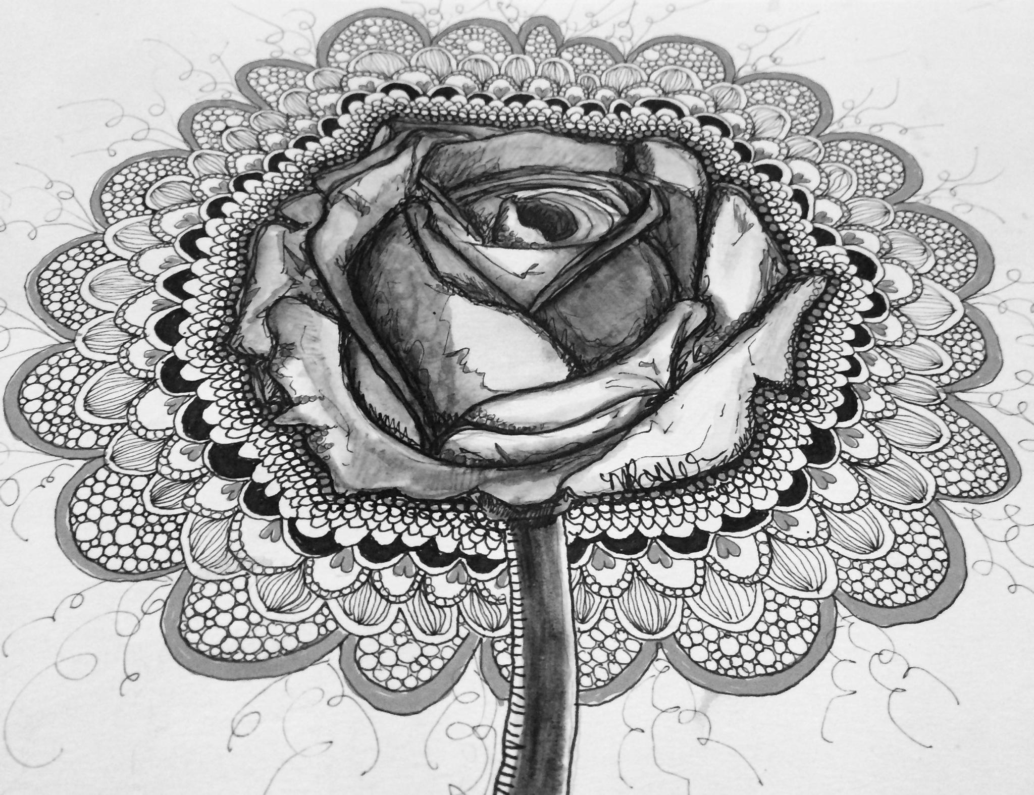 Rose No Dim Light